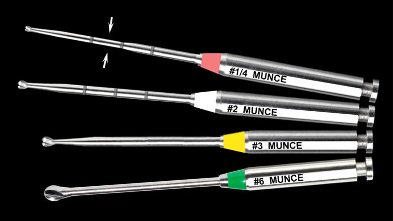 Munce Discovery Burs