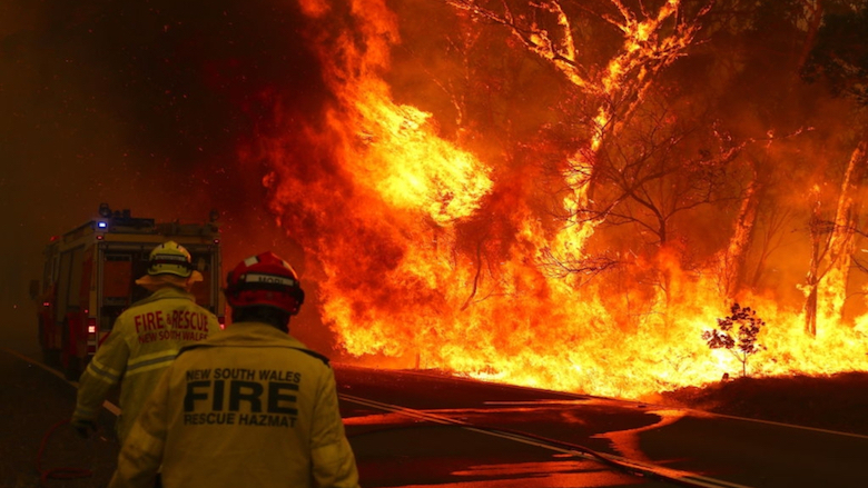 Dental community responds to Australian bush-fires