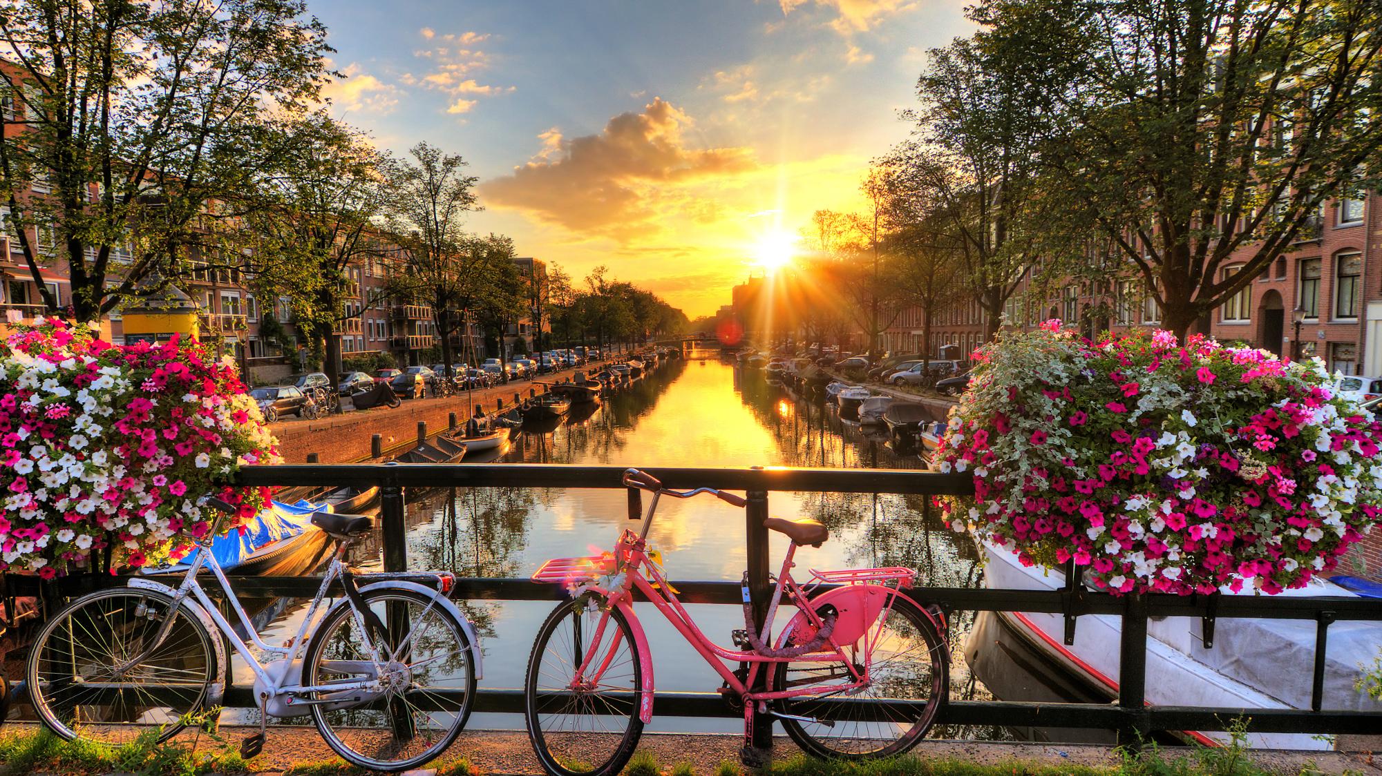Dental Expo Amsterdam 2020