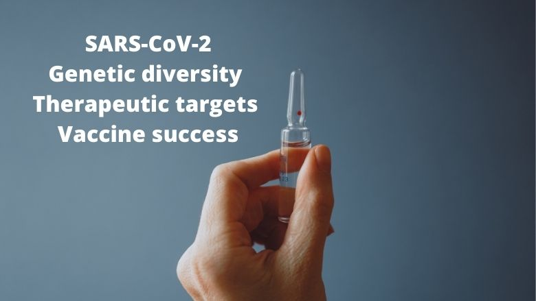 Low genetic diversity of SARS-CoV-2 is its weakness. A single vaccine may cover all its variants