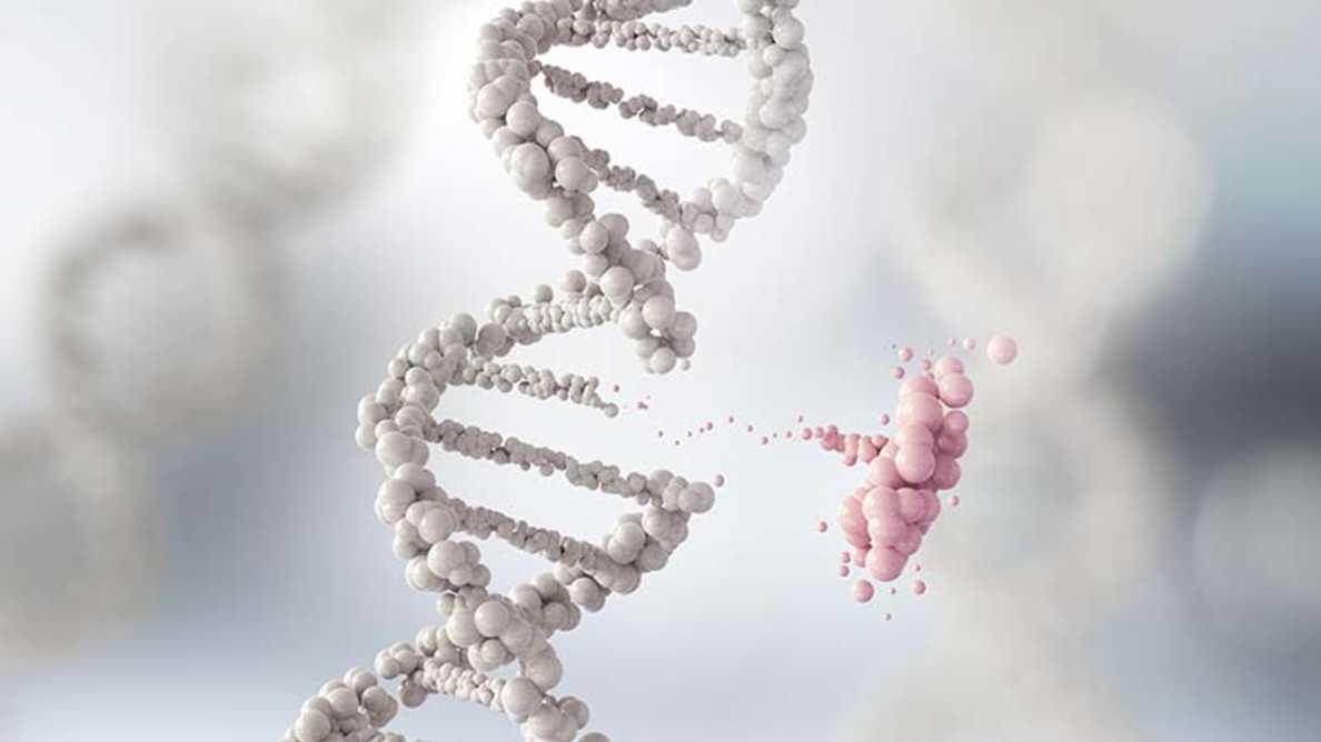 Naukowcy przeprowadzają analizę genomu pod kątem związku między próchnicą a zapaleniem przyzębia