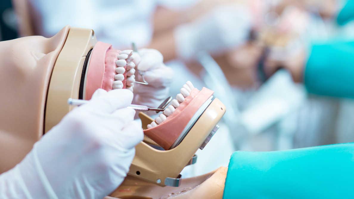 Formation des futurs chirurgiens-dentistes : après les chiffres, quels engagements ?
